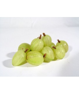 Gooseberry Organic Flavor Emulsion for High Heat Applications