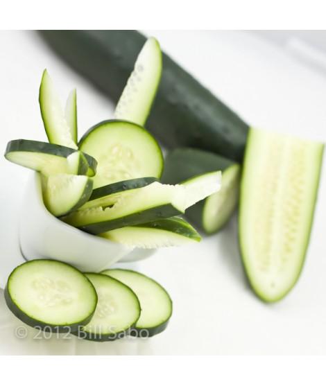 Cucumber Flavor Powder (Sugar Free, Calorie Free)