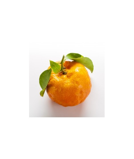 Mandarin Orange Flavor Oil