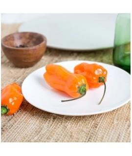 Mango Habanero Flavor Oil