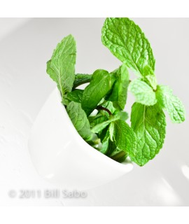 Peppermint Flavor Powder (Sugar Free, Calorie Free)