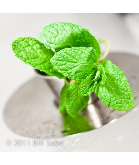 Spearmint Flavor Powder (Sugar Free, Calorie Free)
