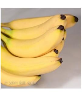 Banana Extract, Natural