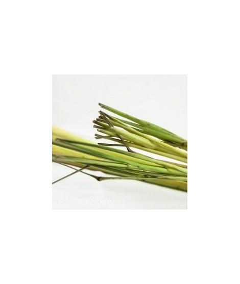 Lemongrass Flavor Extract