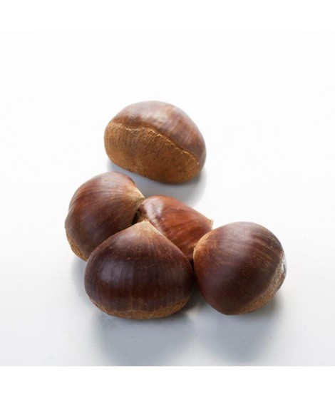 Chestnut Flavor Emulsion for High Heat Applications