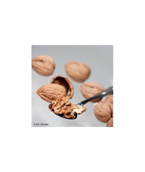 Organic Walnut Flavor Oil For Chocolate (Kosher, Vegan, Gluten-Free, Oil Soluble)