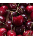 Maraschino Cherry Flavor Emulsion for High Heat Applications