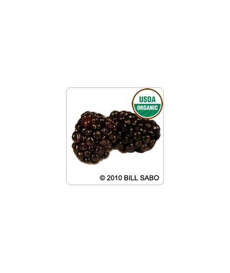 Black Raspberry Flavor Extract