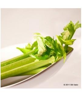 Celery Flavor Extract