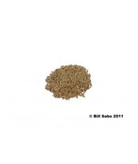 Cumin Extract, Natural