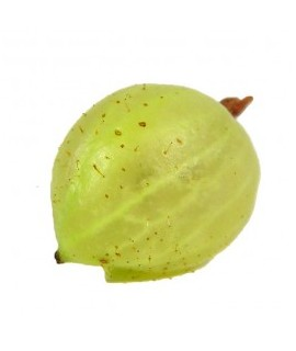 Gooseberry Extract, Natural