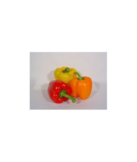 Organic Bell Pepper Flavor Oil