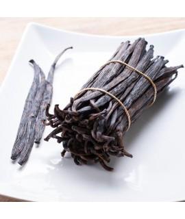 Madagascar Vanilla Extract Organic