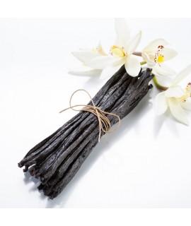 Vanilla Beans Organic 1 Pound