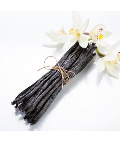Vanilla Extract - 3x Fold Organic