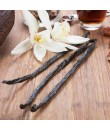 Vanilla Extract Without Diacetyl (Aged) - 2x Fold Organic