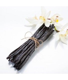 Vanilla Extract Without Diacetyl (Aged) - 4x Fold Organic