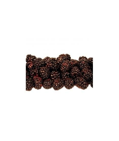 Organic Boysenberry Flavor Oil