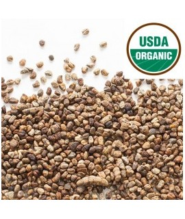 Organic Cardamom Flavor Oil