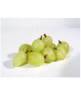 Gooseberry Flavor Oil For Chocolate