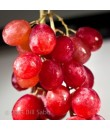 Red Grape Flavor Oil For Chocolate