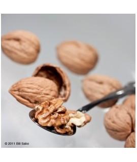 Walnut Flavor Oil For Chocolate