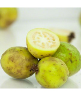 Guava Organic Flavor Emulsion for High Heat Applications