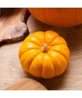 Pumpkin Organic Flavor Emulsion for High Heat Applications