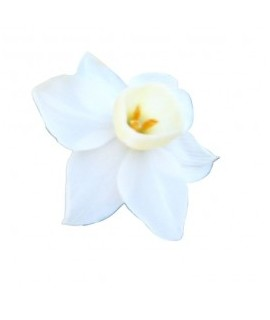 Organic Narcissus Fragrance Oil with Floral Notes (Oil Soluble)
