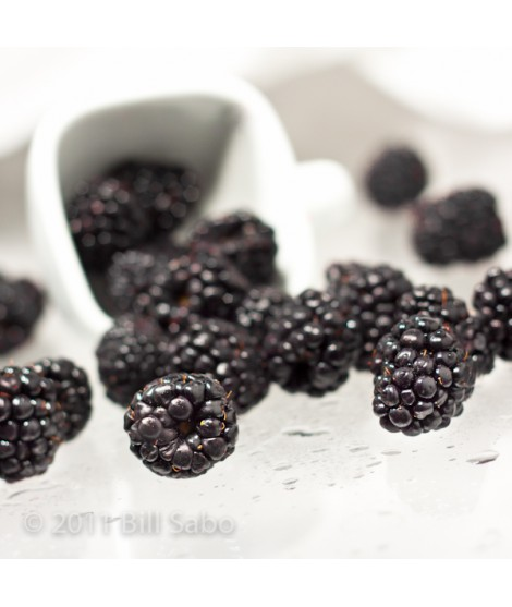 Organic Black Raspberry Flavor Concentrate