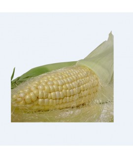 Organic Corn Flavor Concentrate - TTB Approved