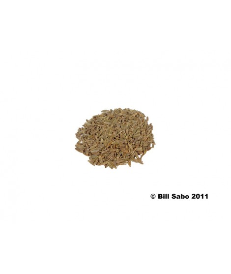 Organic Cumin Flavor Concentrate