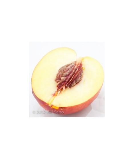 Organic Nectarine Flavor Oil