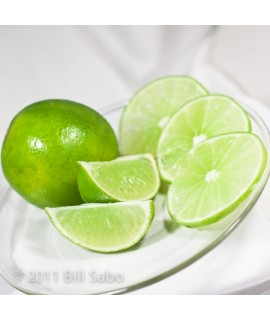 Organic Key Lime Flavor Concentrate