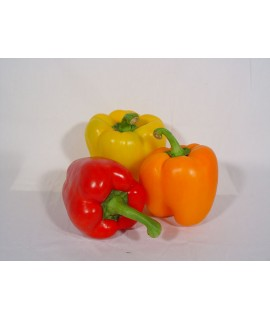 Bell Pepper Extract, Organic