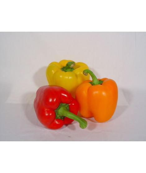 Organic Bell Pepper Flavor Extract