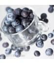 Blueberry Flavor Compounds