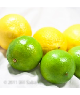 Organic Bergamot Lemon Lime Flavor Extract