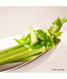 Organic Celery Flavor Extract