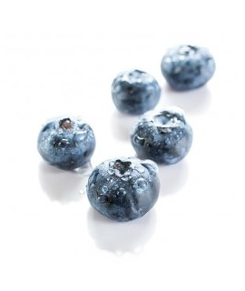 Organic Blueberry Flavor Powder