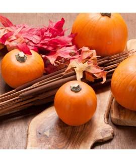 Organic Pumpkin Flavor Compounds