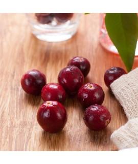 Organic Cranberry Dip