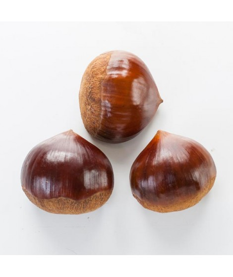 Organic Chestnut Flavor Oil For Chocolate (Kosher, Vegan, Gluten-Free, Oil Soluble)
