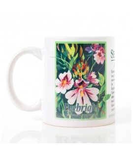 Coffee and Tea Mug - Eyebright