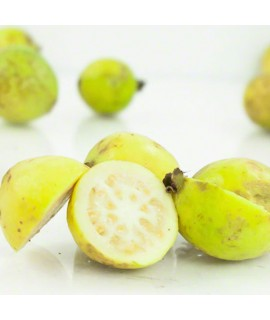 Organic Guava Flavor Oil For Chocolate (Kosher, Vegan, Gluten Free, Oil Soluble)