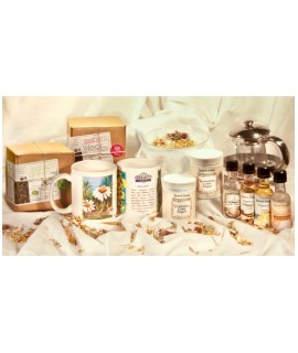 Natures Organic Tea Gift Box
