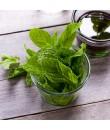 Organic Mint Flavor Oil For Chocolate (Kosher, Vegan, Gluten-Free, Oil Soluble)