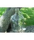 Gallon Glass Jug with Gold Plastisol Cap