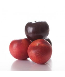 Organic Plum Flavor Oil For Chocolate (Kosher, Vegan, Gluten-Free, Oil Soluble)