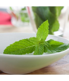 Organic Spearmint Flavor Oil For Chocolate (Kosher, Vegan, Gluten-Free, Oil Soluble)